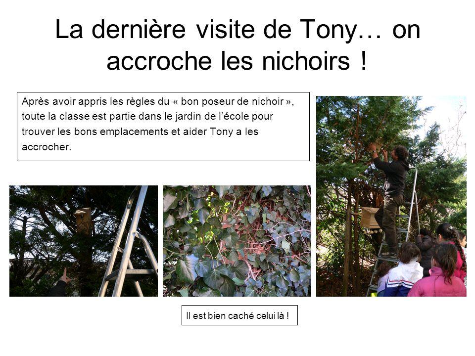 La dernière visite de Tony… on accroche les nichoirs !