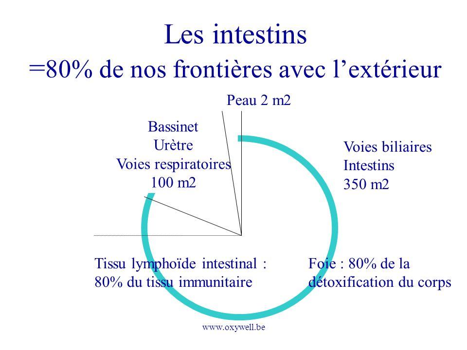 Les intestins =80% de nos frontières avec l'extérieur
