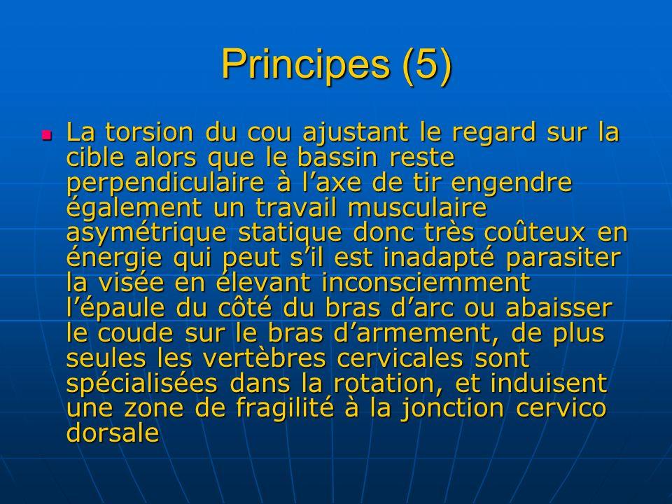 Principes (5)