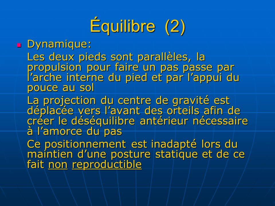 Équilibre (2) Dynamique: