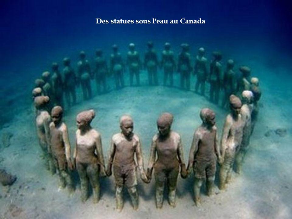 Des statues sous l eau au Canada