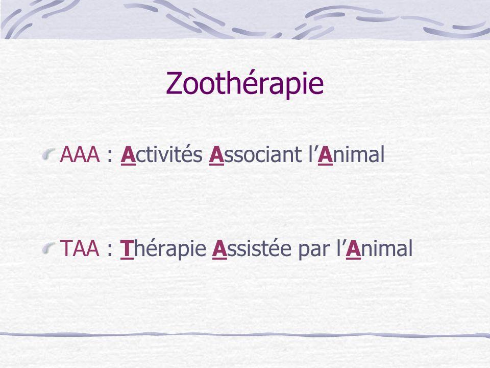 Zoothérapie AAA : Activités Associant l'Animal