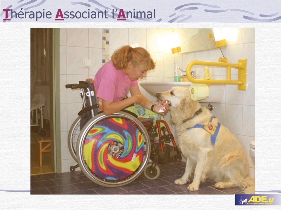 Thérapie Associant l'Animal