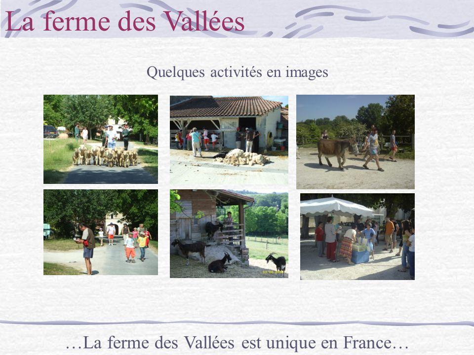 La ferme des Vallées …La ferme des Vallées est unique en France…