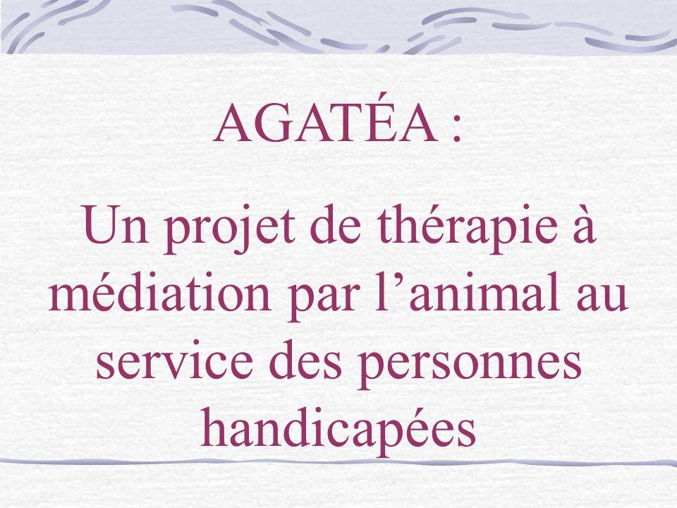 AGATÉA : Un projet de thérapie à médiation par l'animal au service des personnes handicapées