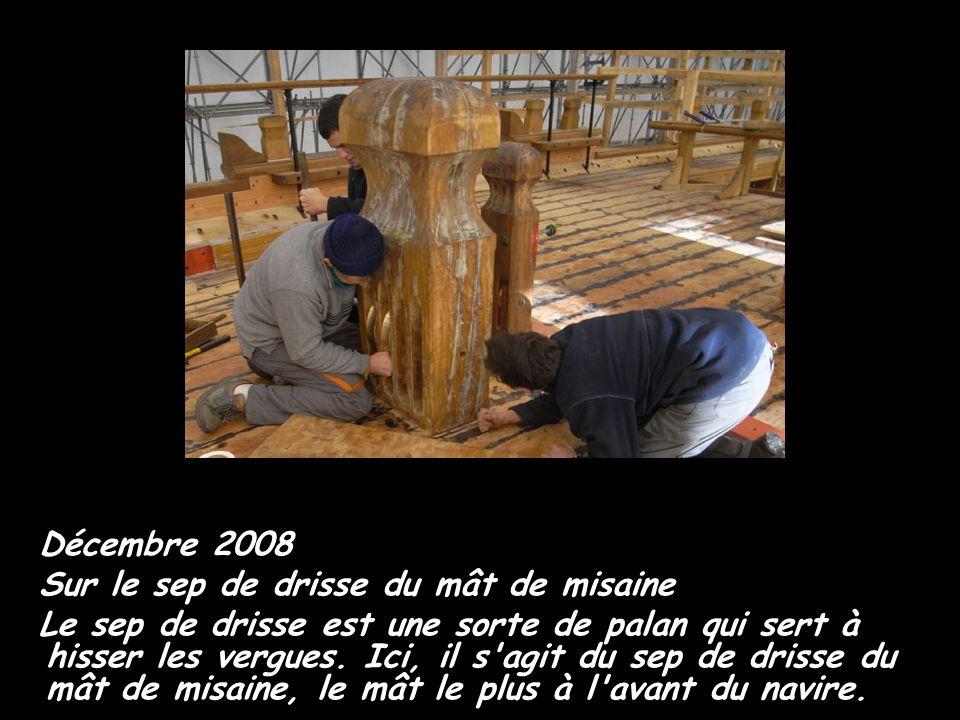 Décembre 2008 Sur le sep de drisse du mât de misaine.