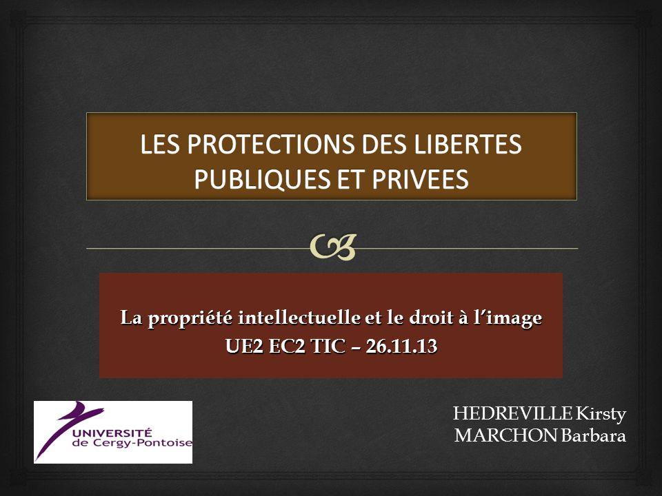 LES PROTECTIONS DES LIBERTES PUBLIQUES ET PRIVEES