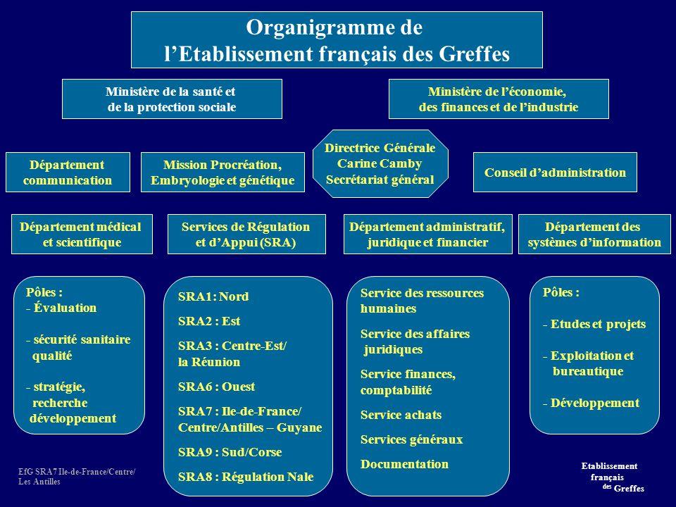 Organigramme de l'Etablissement français des Greffes