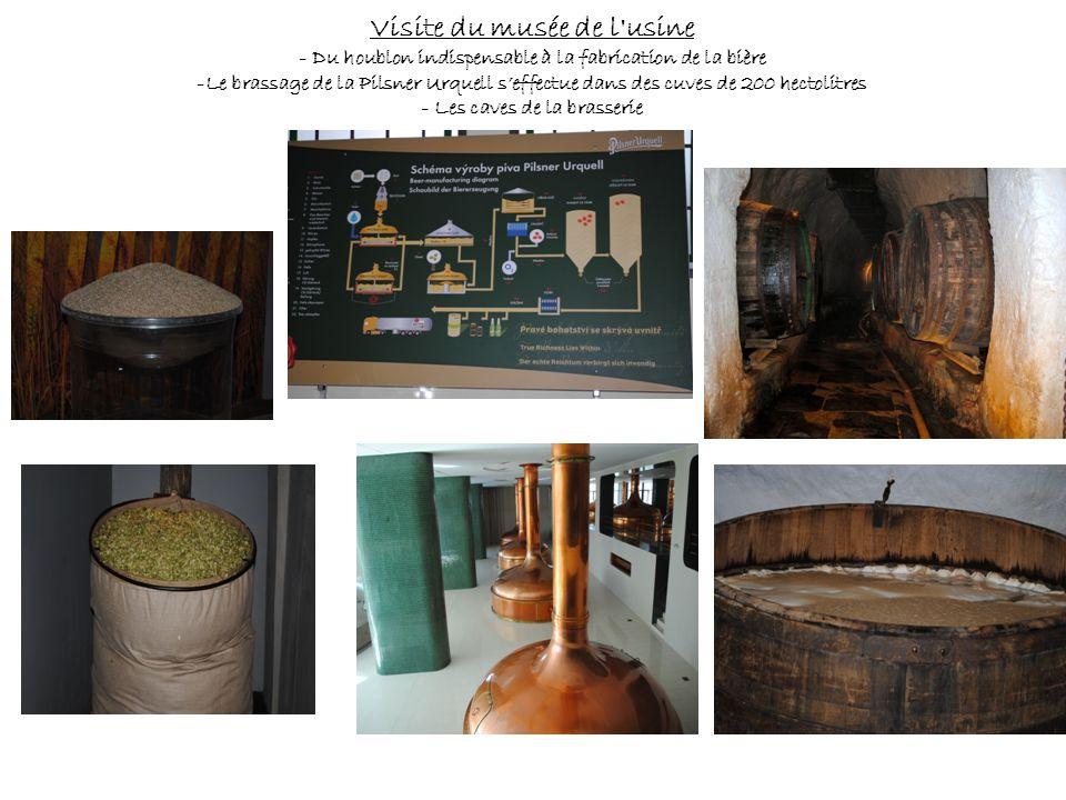 Visite du musée de l usine
