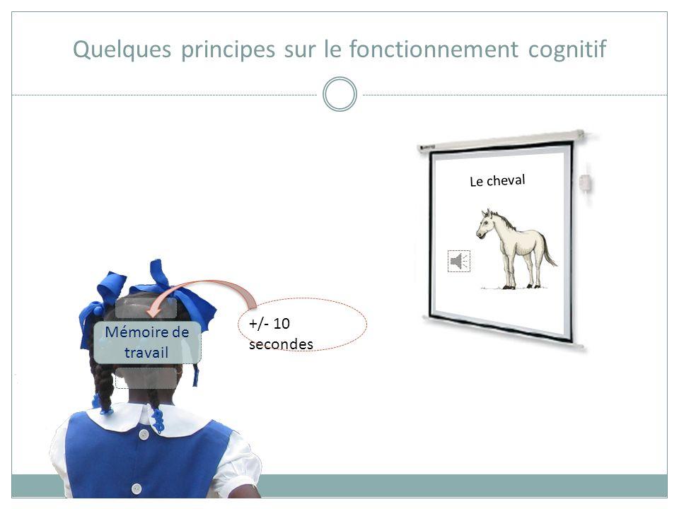 Quelques principes sur le fonctionnement cognitif