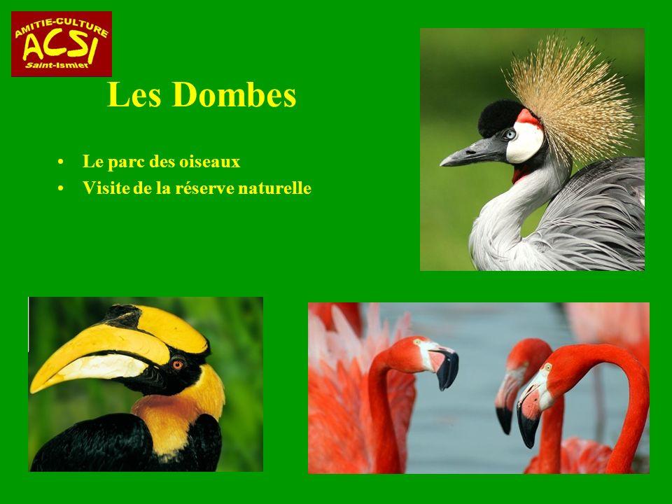 Les Dombes Le parc des oiseaux Visite de la réserve naturelle