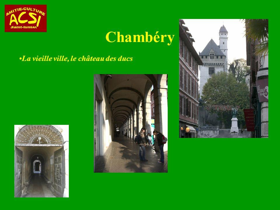 Chambéry La vieille ville, le château des ducs 32