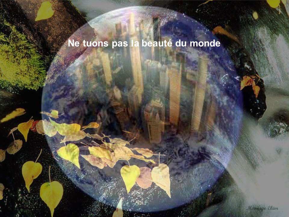 Ne tuons pas la beauté du monde