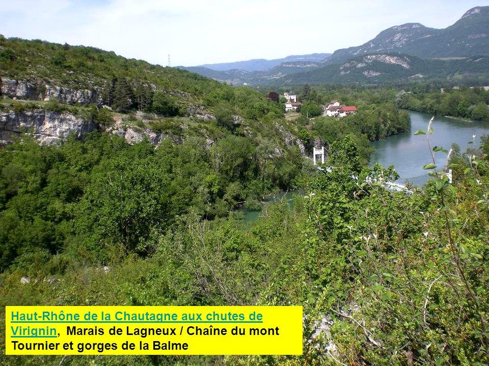 Haut-Rhône de la Chautagne aux chutes de Virignin, Marais de Lagneux / Chaîne du mont Tournier et gorges de la Balme