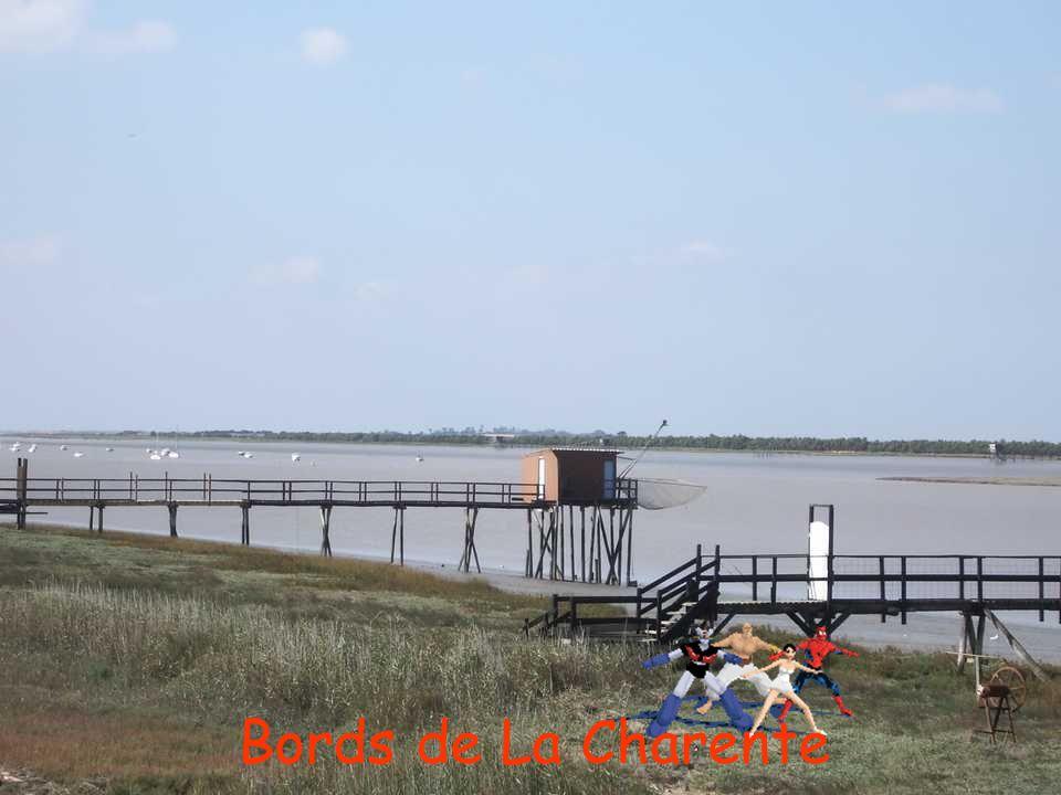Bords de La Charente