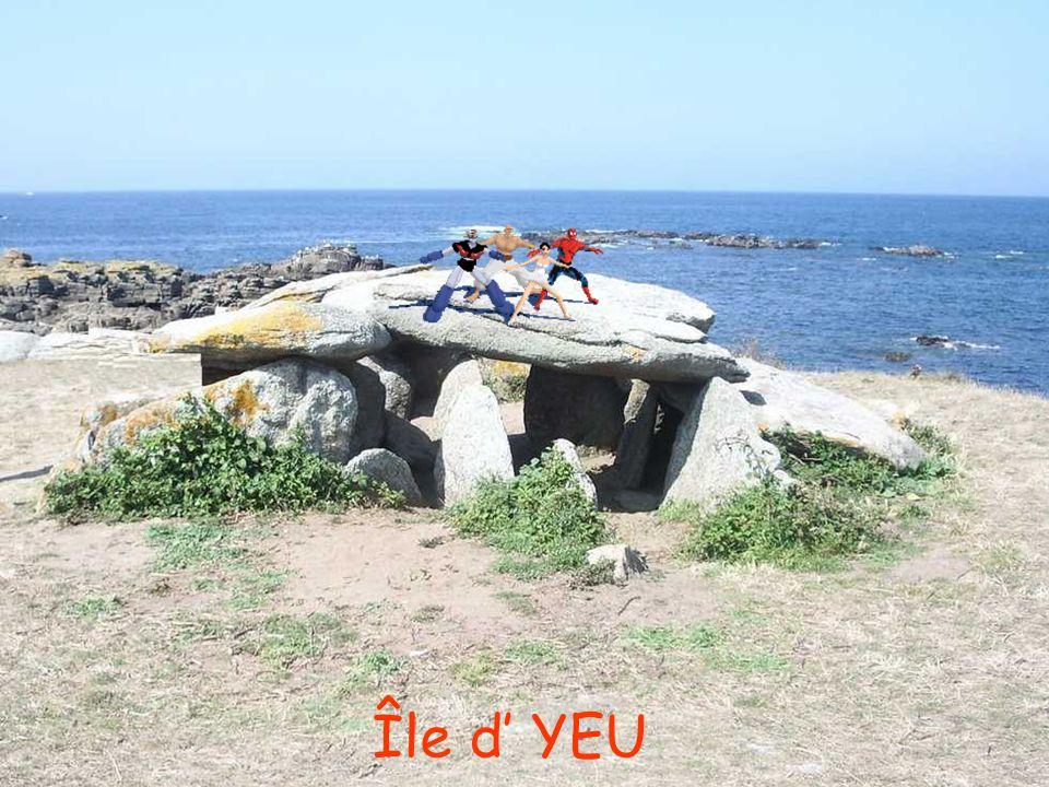 Île d' YEU