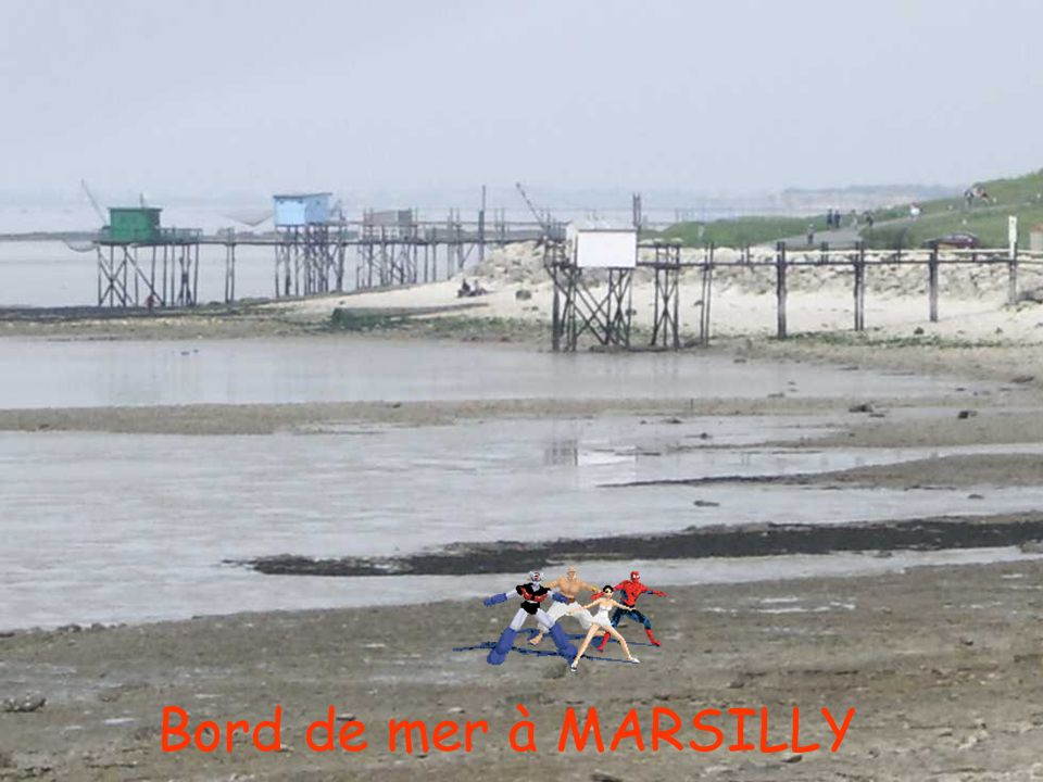 Bord de mer à MARSILLY