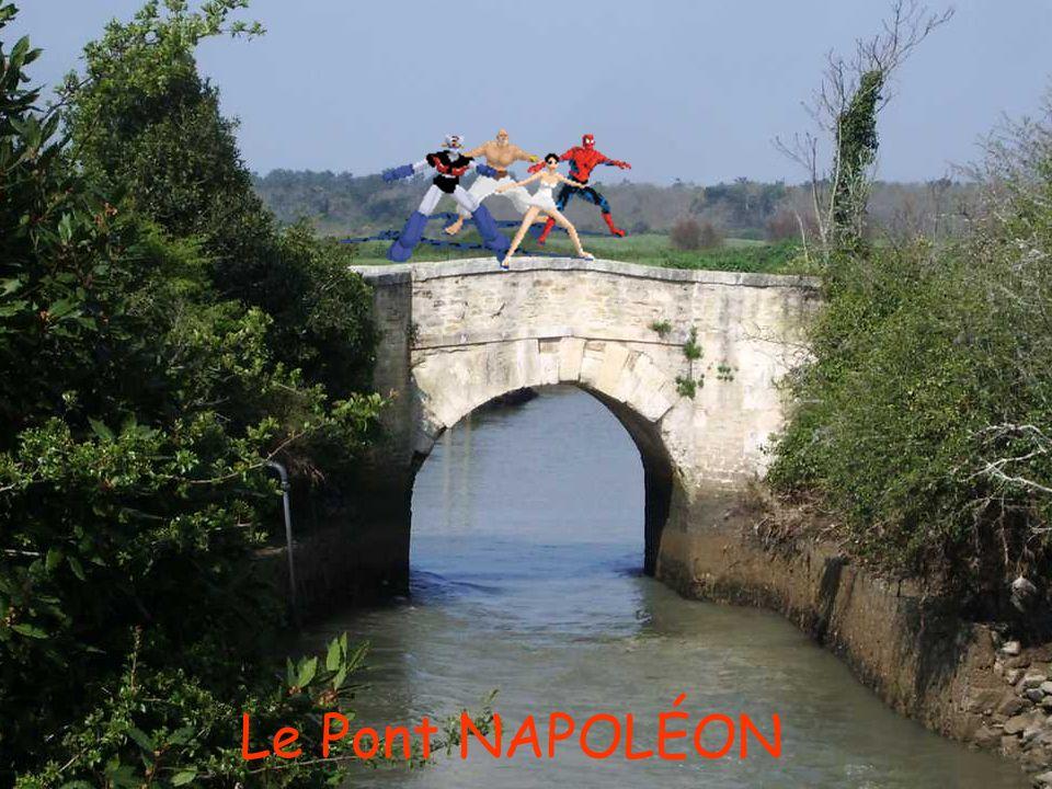 Le Pont NAPOLÉON