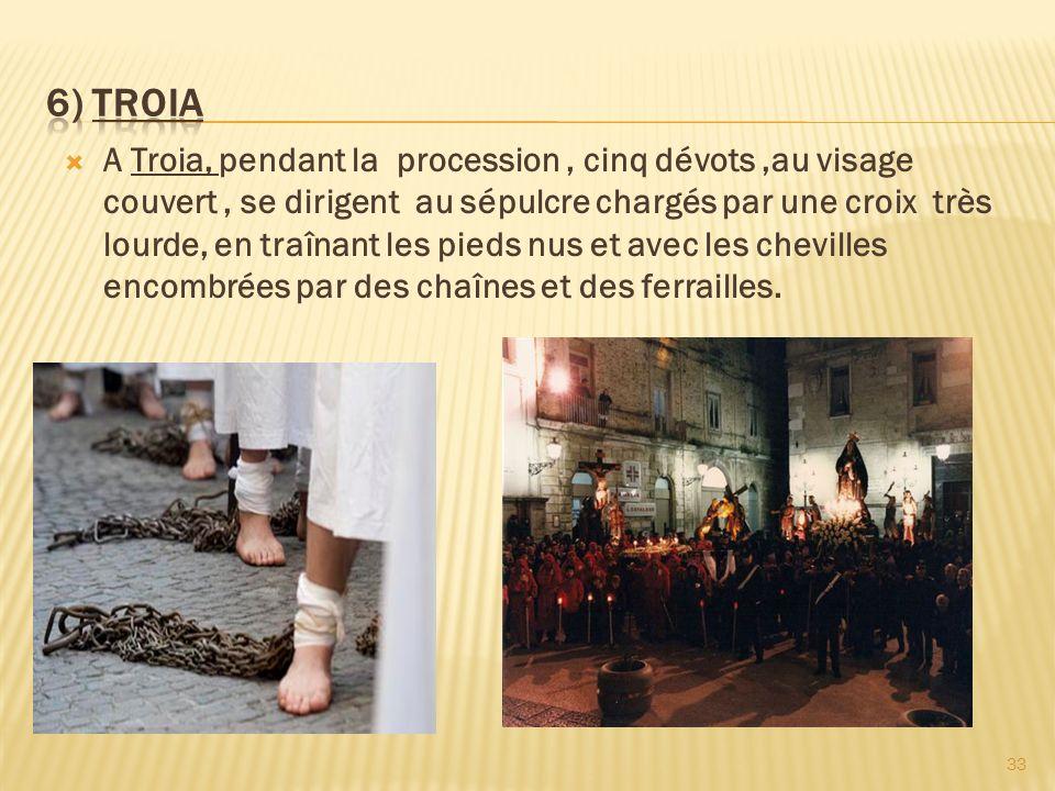 6) TROIA