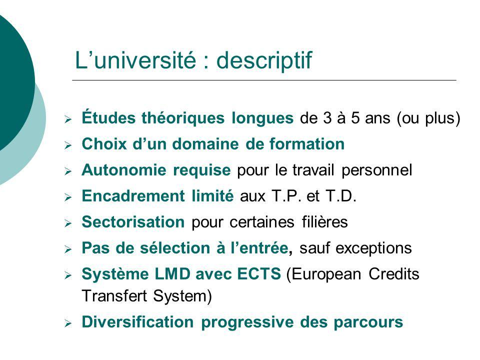 L'université : descriptif
