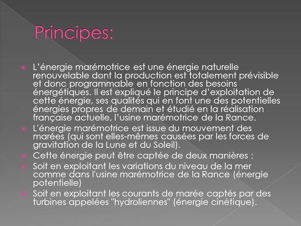 Principes: