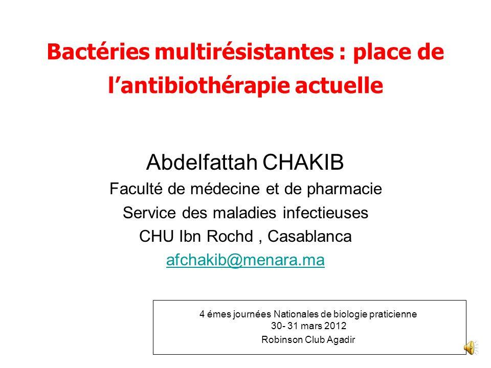 Bactéries multirésistantes : place de l'antibiothérapie actuelle