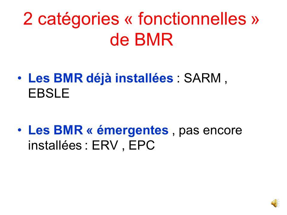2 catégories « fonctionnelles » de BMR