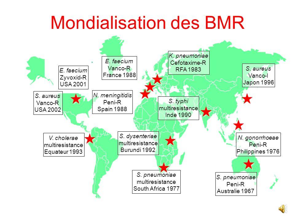Mondialisation des BMR