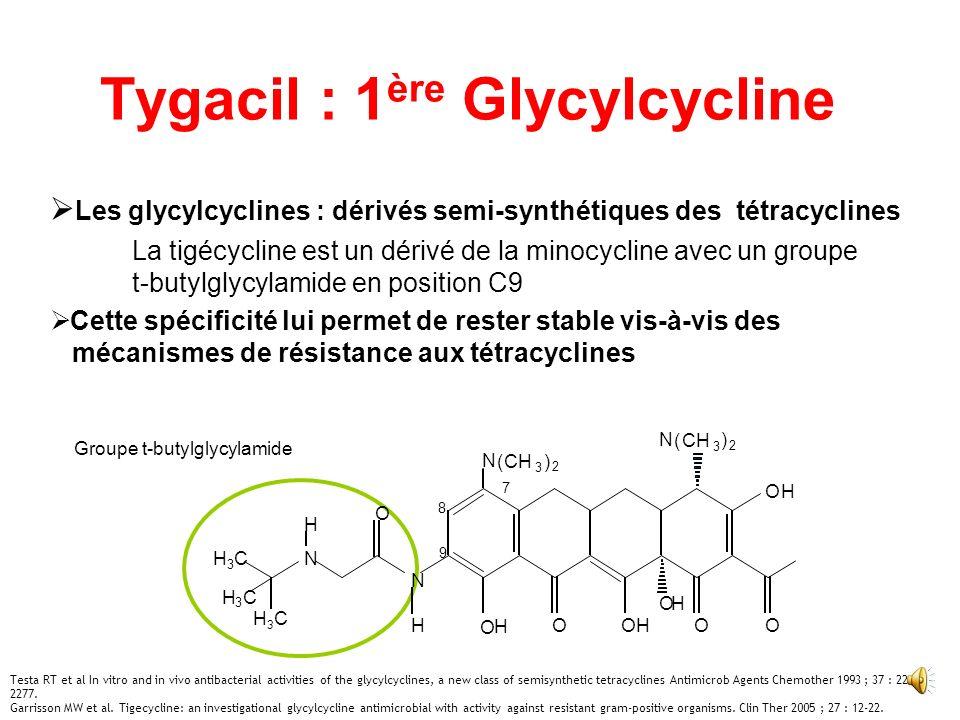 Tygacil : 1ère Glycylcycline