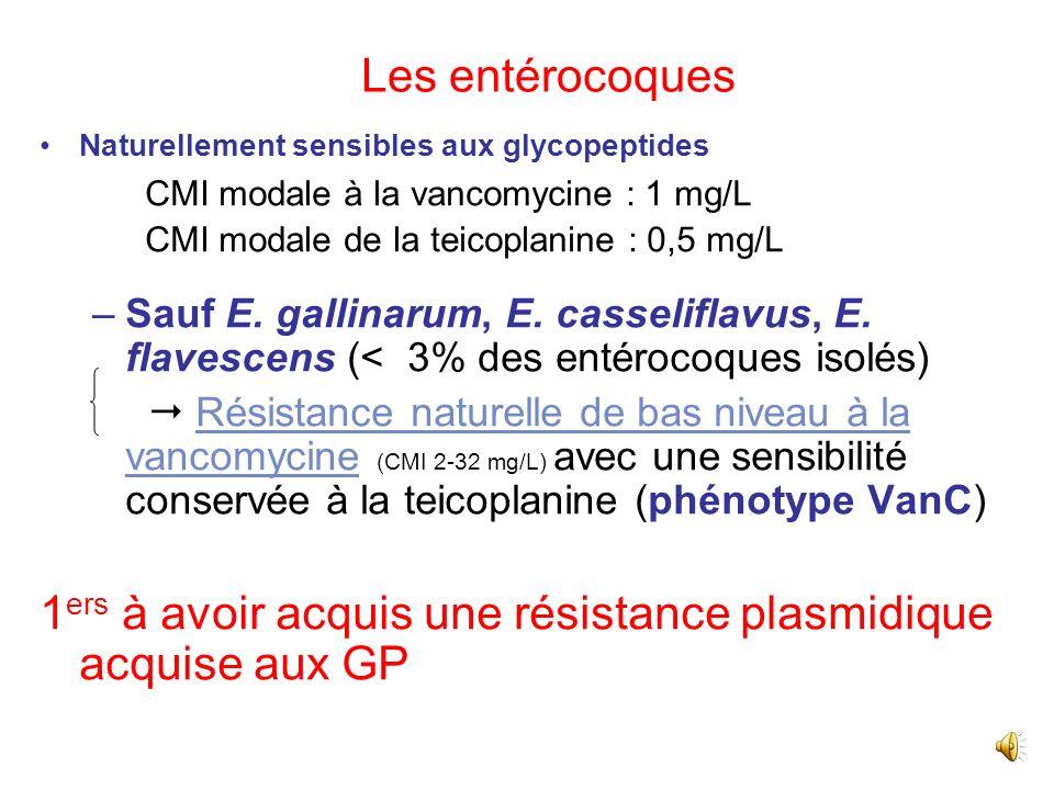 1ers à avoir acquis une résistance plasmidique acquise aux GP