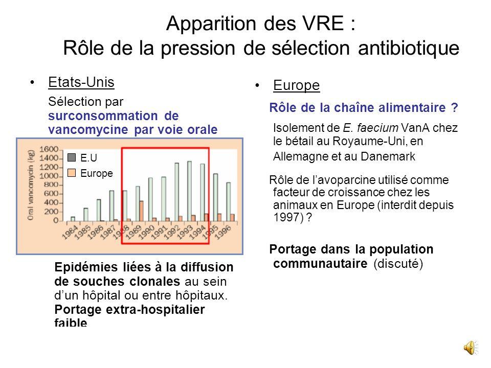 Apparition des VRE : Rôle de la pression de sélection antibiotique