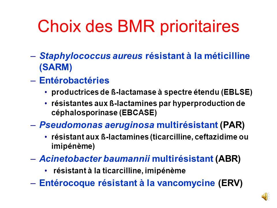 Choix des BMR prioritaires