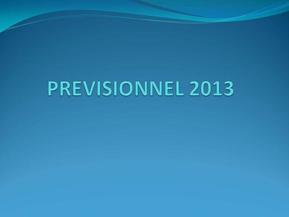 PREVISIONNEL 2013