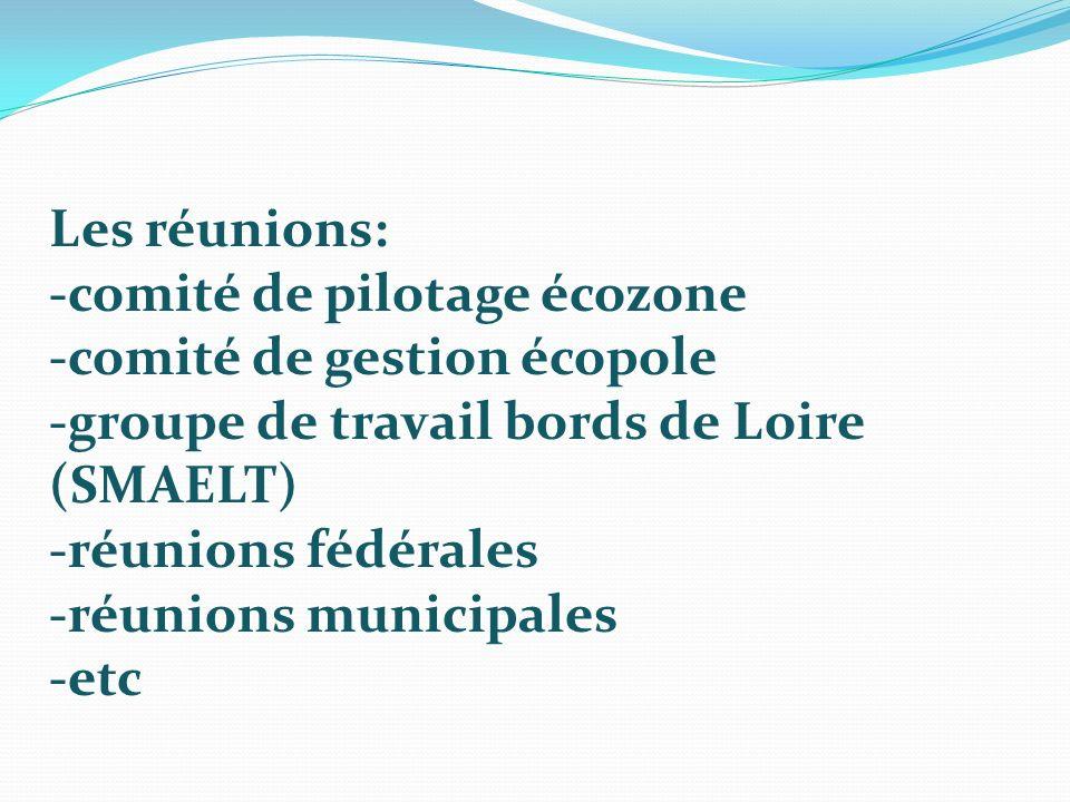 Les réunions: -comité de pilotage écozone. -comité de gestion écopole. -groupe de travail bords de Loire (SMAELT)