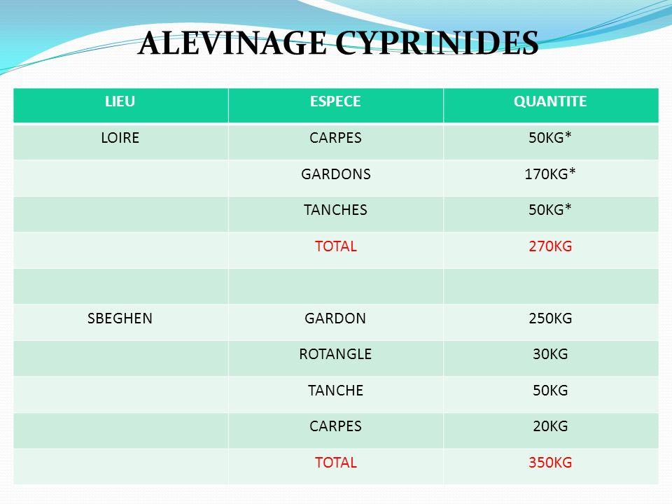 ALEVINAGE CYPRINIDES LIEU ESPECE QUANTITE LOIRE CARPES 50KG* GARDONS