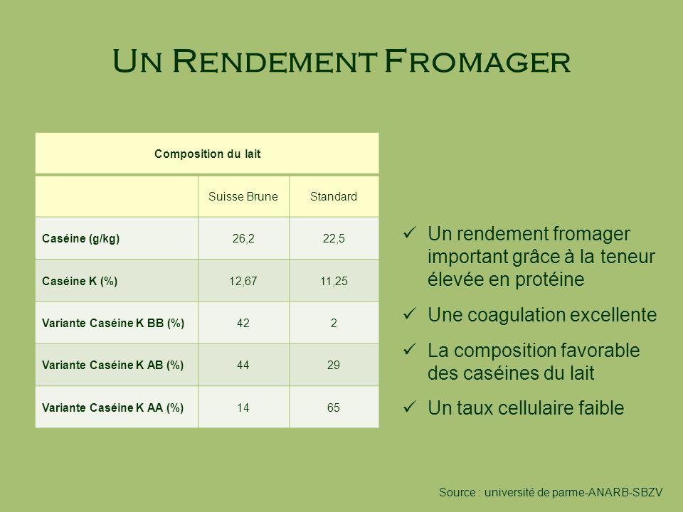 Un Rendement Fromager Composition du lait. Suisse Brune. Standard. Caséine (g/kg) 26,2. 22,5. Caséine K (%)