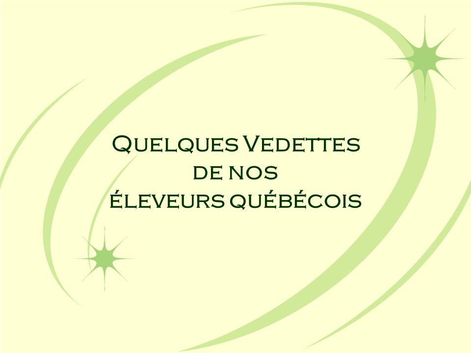 Quelques Vedettes de nos éleveurs québécois