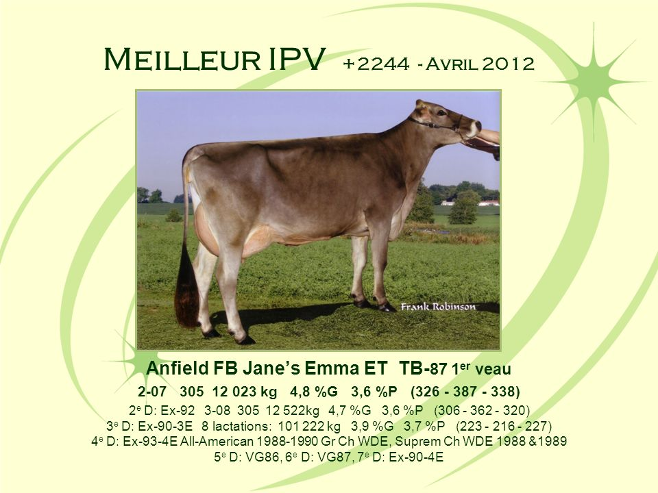 Anfield FB Jane's Emma ET TB-87 1er veau