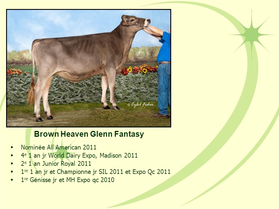 Brown Heaven Glenn Fantasy