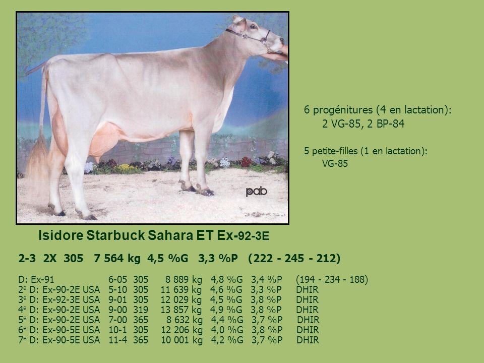 Isidore Starbuck Sahara ET Ex-92-3E