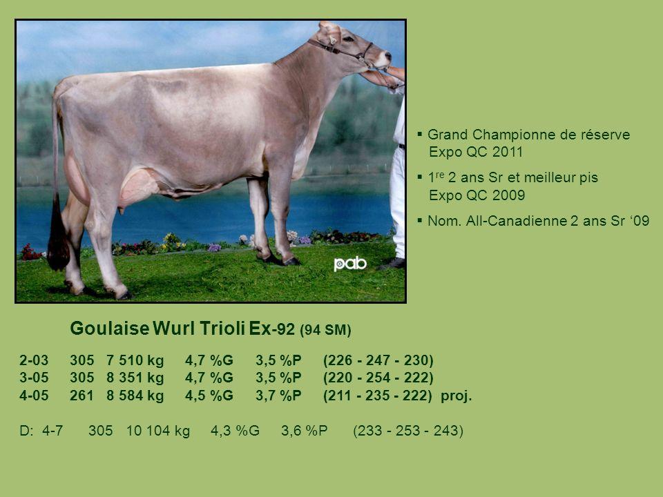 Goulaise Wurl Trioli Ex-92 (94 SM)