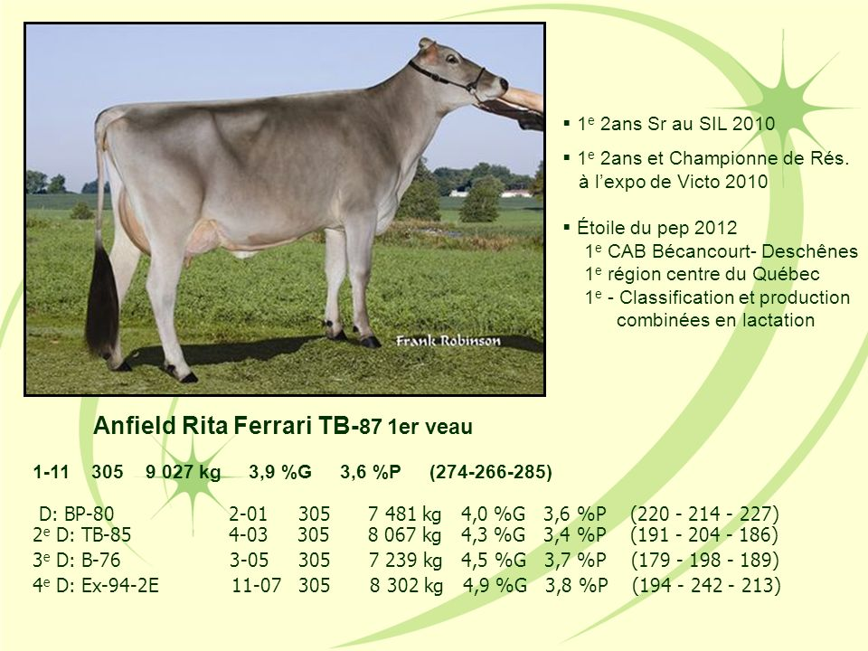 Anfield Rita Ferrari TB-87 1er veau