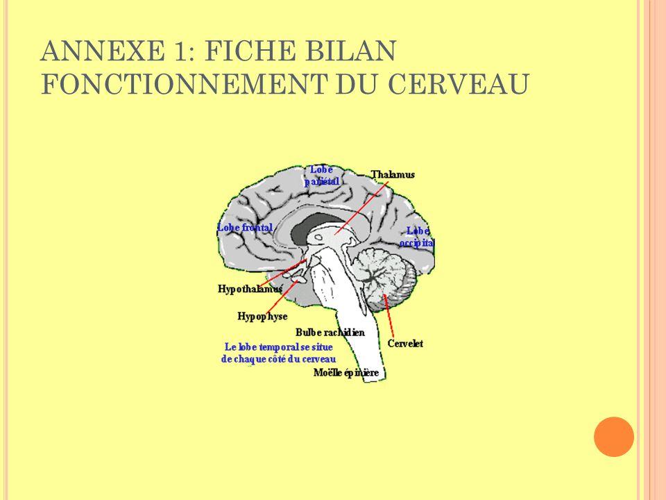 ANNEXE 1: FICHE BILAN FONCTIONNEMENT DU CERVEAU