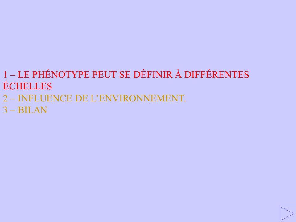 1 – LE PHÉNOTYPE PEUT SE DÉFINIR À DIFFÉRENTES ÉCHELLES