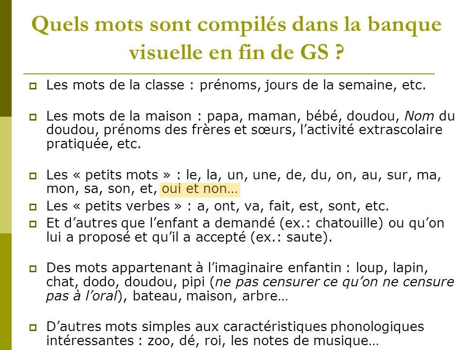 Quels mots sont compilés dans la banque visuelle en fin de GS