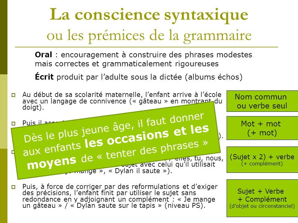 La conscience syntaxique ou les prémices de la grammaire