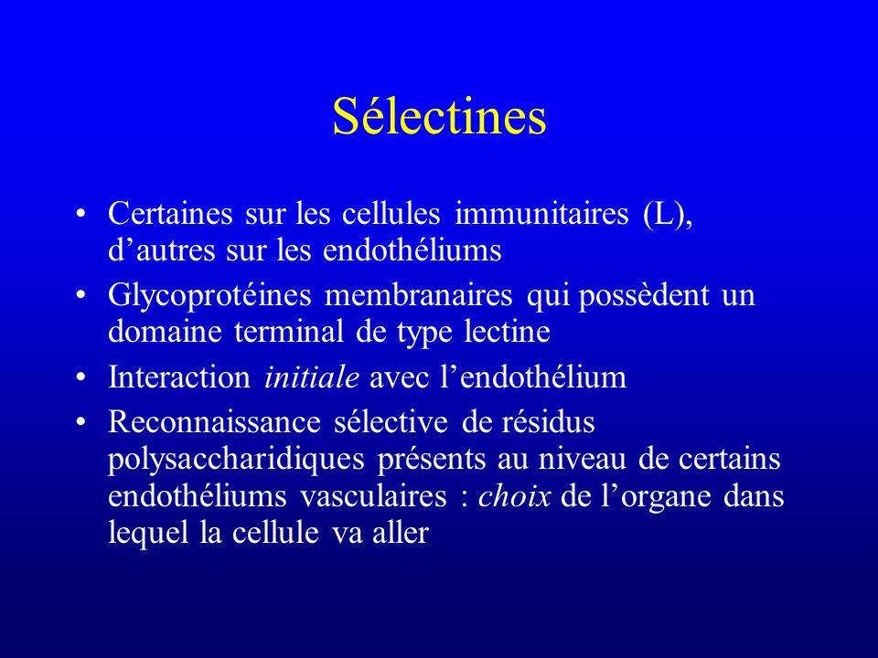 Sélectines Certaines sur les cellules immunitaires (L), d'autres sur les endothéliums.