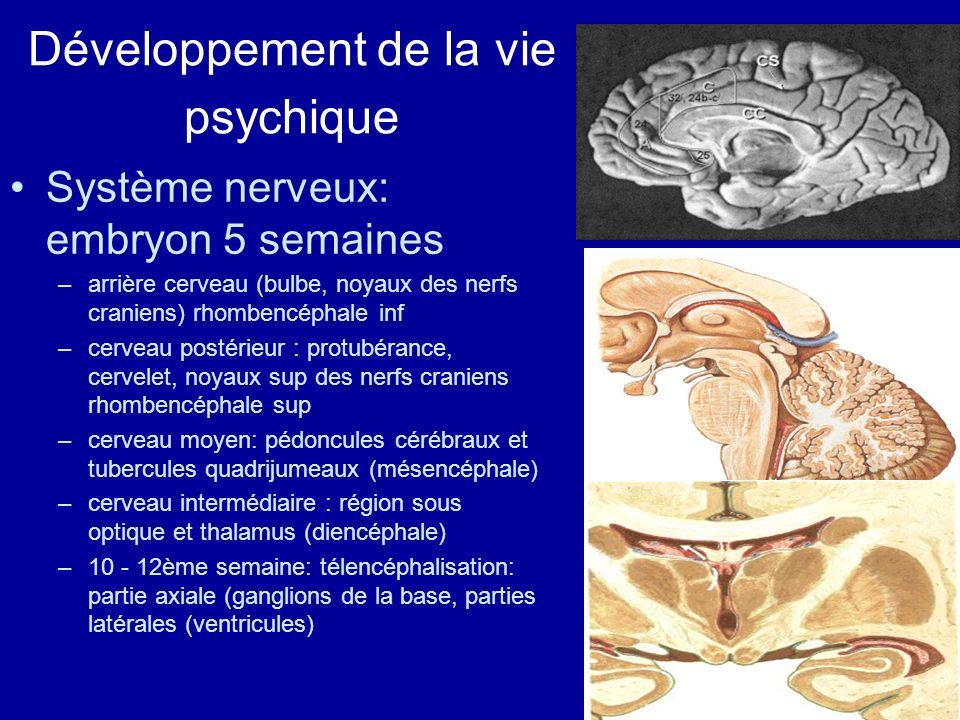 Développement de la vie psychique