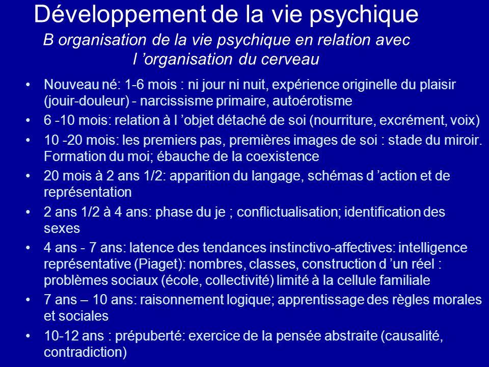 Développement de la vie psychique B organisation de la vie psychique en relation avec l 'organisation du cerveau
