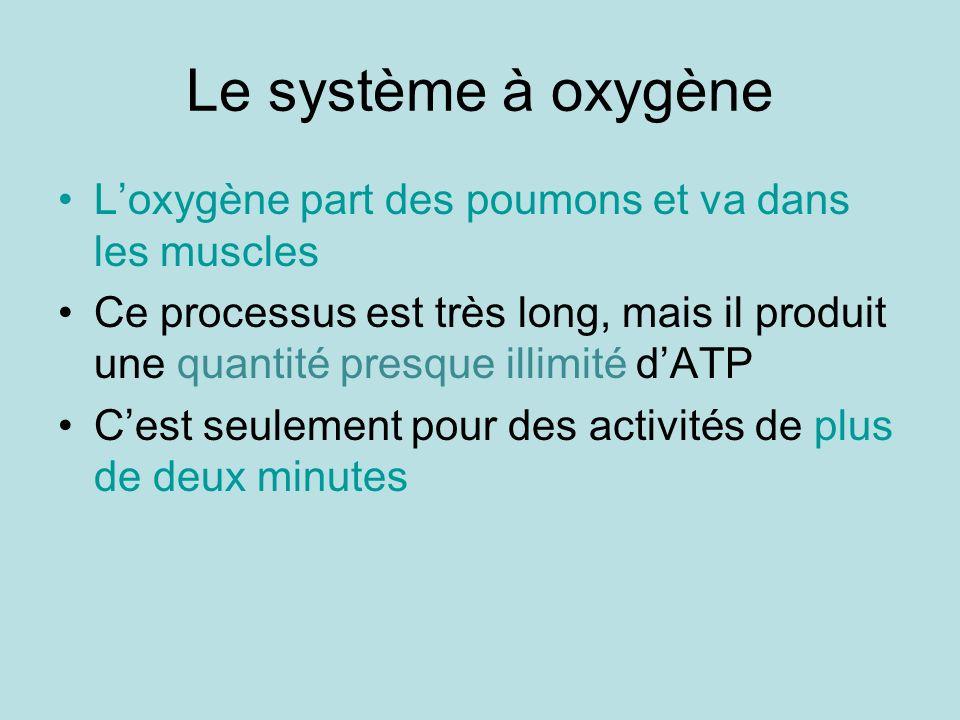 Le système à oxygène L'oxygène part des poumons et va dans les muscles